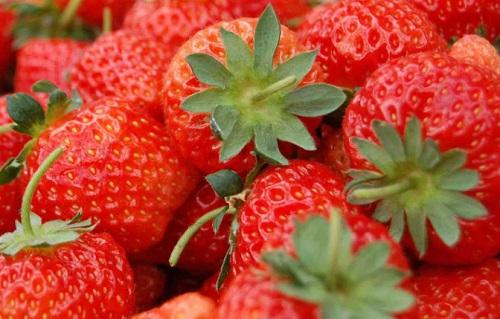 草莓保存方法及温度 怎么储存时间长