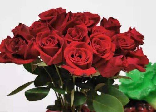 19朵玫瑰花语代表什么意思