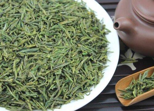 绿茶采摘时间和收获季节