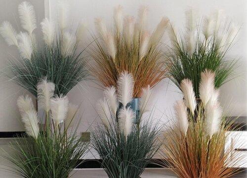 芦苇怎么做干花不掉绒毛 干花制作流程