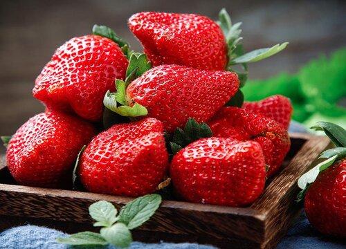 草莓品种排名前十  草莓品种排行榜