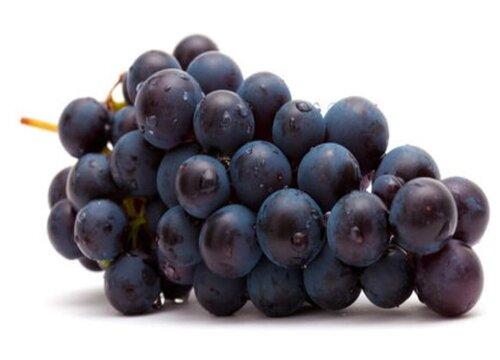 葡萄和提子是一个品种吗 是同一种水果吗