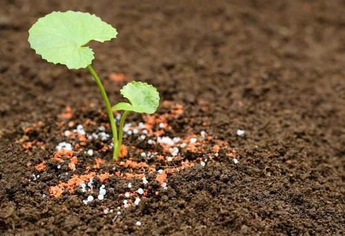 硫酸钙可以做肥料吗 怎么施合适